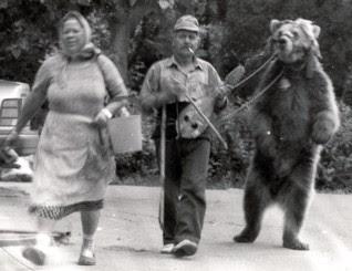 Dumneazu: The End of the Dancing Bears